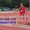 LC Cottbus mit zwei Athleten zur Junioren-WM und Jugend-EM