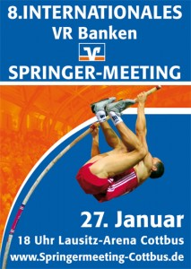 springermeeting_logo2010_big